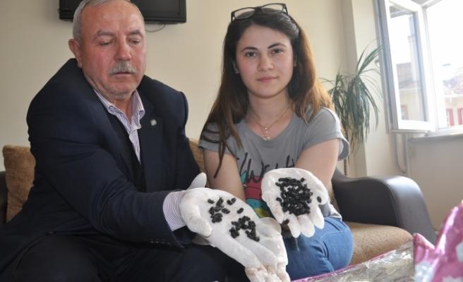 Bursa'yı böcekler mi bastı?