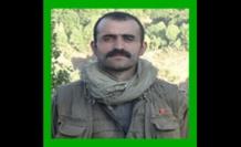 Diyarbakır'da 'yeşil liste' temizliği