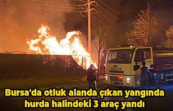 Bursa'da otluk alanda çıkan yangında hurda halindeki 3 araç yandı