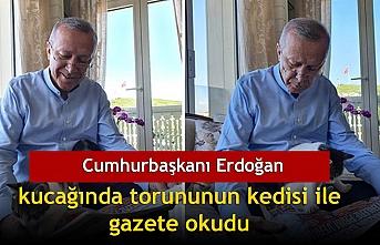 Cumhurbaşkanı Erdoğan kucağında torununun kedisi ile gazete okudu
