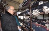Bursa'da çiftinin projesi hayatını değiştirdi