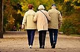 2050'de 80 yaş üzeri nüfus 426 milyona yükselecek
