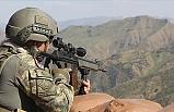 PKK'lı o terörist etkisiz hale getirildi!