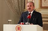 Mustafa Şentop: Türkiye'nin haklılığı tescil edilmiş oldu