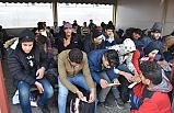 Edirne'de düzensiz göçmen rekoru!