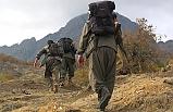 Jandarmanın iknasıyla 3 terörist teslim oldu