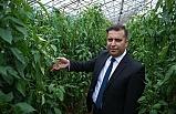 Karayel: Türkiye tarımsal üretim gücünü gösterdi
