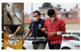 El konulan kumar parasını geri almak için polisin elini ısıran şüpheli serbest kaldı