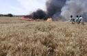 Foça'da, tarlada çıkan yangında 40 ton 'buğday'...