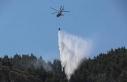 Denizli'de orman yangını/ Fotoğraflar