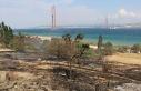 Gelibolu'da orman yangını /Ek fotoğraflar
