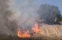 Silivri'de otluk alan yandı, meyve ağaçları...