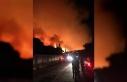 Hakkıbey Yarımadası'nda orman yangını