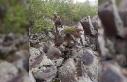 İçişleri: 2 kadın terörist sağ olarak ele geçirildi...