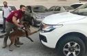 Şanlıurfa'da kamyonette 28 kilo esrar ele geçti