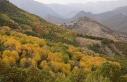 Tunceli'de sonbahar güzelliği renk cümbüşü...
