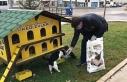 Amasya Belediyesi ekiplerinden sokak hayvanlarına...