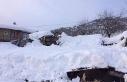 Yoğun kardan ahır çöktü, 7 hayvan telef oldu