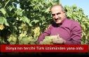 Dünya'nın tercihi Türk üzümünden yana oldu