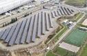 Güneş enerjisi tesisiyle yılda 1616 ağacın kurtarılması...