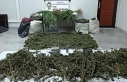 Hevsel Bahçeleri'nde iki noktaya uyuşturucu operasyonu:...