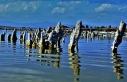 Van Gölü'ndeki mikrobiyalitler yok olma sürecini...