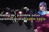 Uludağ'da, piknikte odun toplamaya çıkan kadın kayıp