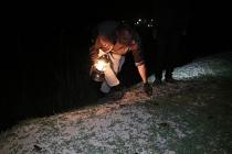 Avcılar gaz lambalarıyla kurbağa avına çıktı