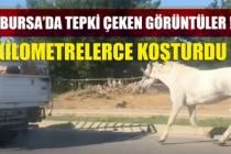 Bursa'da tepki çeken görüntü! Kilometrelerce koşturdu