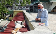 'Kedilerin Dedesi' yasağın ardından hem kedilerine hem işine kavuştu