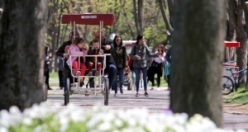 Botanik Park'ta baharla birlikte renkli görüntüler ortaya çıktı