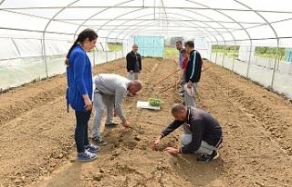 'Tarımla Engellerimizi Aşıyoruz' projesi engellilere...