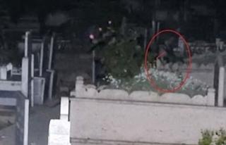 Türkiye onu konuşuyor... Geceleri mezarlıkta ağlayan...