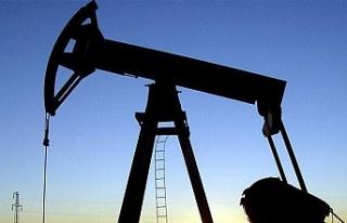 Petrol üretimini 10 yılda ikiye katladı