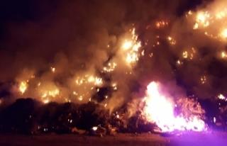 Bilecik'te çöplük yangını