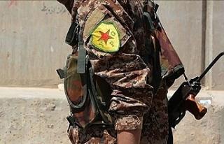 Korkularından Esad'a sarılan YPG/PKK'nın...