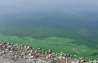 Atatürk Baraj Gölü'nde korkutan görüntü