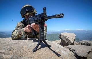 PKK'lı bir terörist öldürüldü