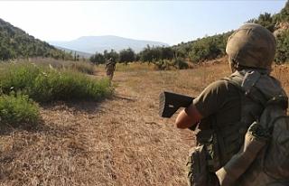 Şehitlerin cenazesini kaçıran hain PKK'lı yakalandı