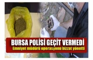 Bursa'da yapılan uyuşturucu operasyonunda 6...