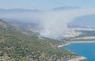 Muğla'da orman yangını (1)