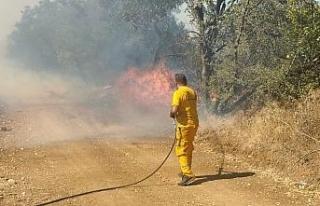 Bursa'da çiftlikten ormana sıçrayan yangın kontrol...