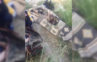 Fırat Nehri'ne giren 2 genç boğuldu