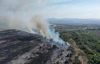 Kızılırmak Deltası'ndaki yangın, UNESCO...