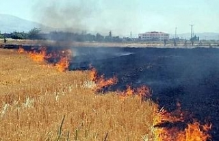 Anız yangınları kuraklığı tetikliyor