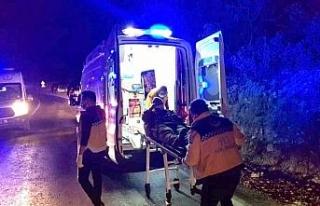 Hayvan yüklü kamyon devrildi: 2 kişi yaralandı,...