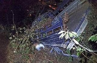 Kamyonet uçuruma yuvarlandı: 1 ölü, 2 yaralı