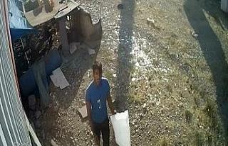 Torba ile tavuk çalan hırsızlık zanlısı yakalandı