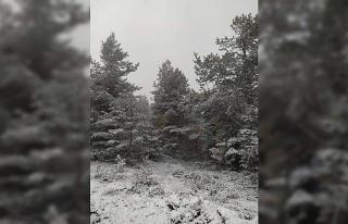 Kastamonu'da sahil bölgesinde kar yağışı etkili...