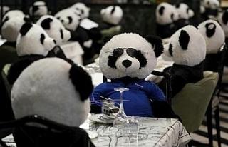 Koronadan kapanan restoranında oyuncak pandaları...